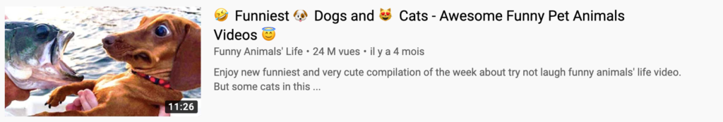 miniature youtube chien
